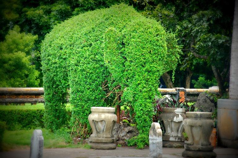 130_elephant